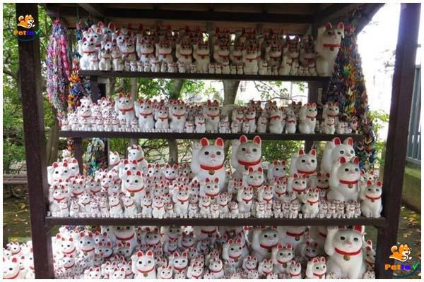 Ở đền có vô số tượng mèo thần tài