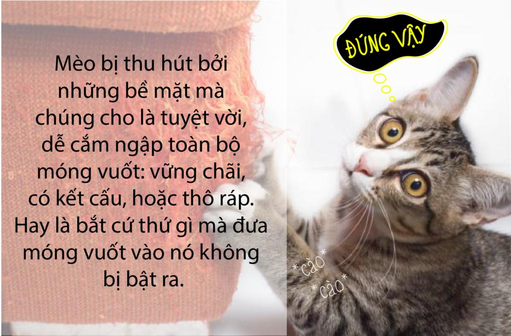 Sản phẩm Trụ cào móng cho mèo được thiết kế trên sở thích cào cấu của mèo. Edit: Petto.