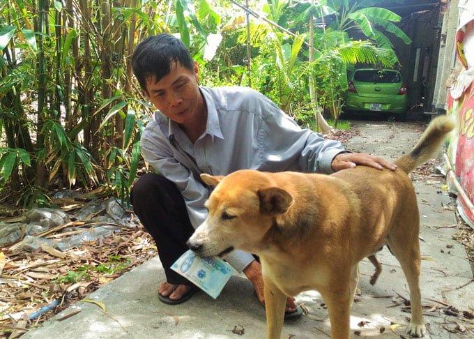 Dân mạng lại được phen ngỡ ngàng trước hành động của một chú chó bán vé số