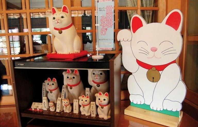 Chú mèo may mắn ở Nhật Bản
